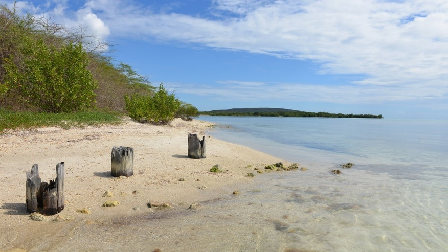 This  Jan. 25, 2014 photo, shows a sandy beach with the remains of an old wharf on uninhabited Little Goat Island, Jamaica. The island is one of two outlying cays fringed by mangroves located less than a mile off the southern Jamaican town of Old Harbor. A skirmish has been brewing between the Jamaican government and the conservation lobby over a transshipment port to be developed by state-run China Harbor Engineering Co. that is planned for the uninhabited Goat Islands in a swath of the island's biggest protected area. (AP Photo/David McFadden)