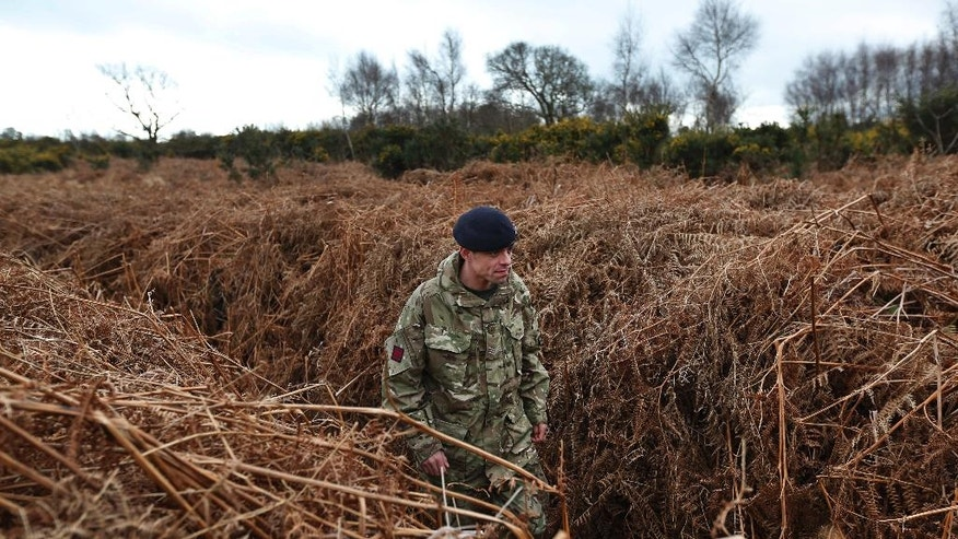 A British army officer walks on a WW1 practise trench as he poses for the photographers in Gosport, southern England, Thursday, March 6, 2014. This overgrown and oddly corrugated patch of heathland on England's south coast was once a practice battlefield, complete with trenches, weapons and barbed wire. Thousands of troops trained here to take on the Germany army. After the 1918 victory _ which cost 1 million Britons their lives _ the site was forgotten, until it was recently rediscovered by a local official with an interest in military history. Now the trenches are being used to reveal how the Great War transformed Britain _ physically as well as socially. As living memories of the conflict fade, historians hope these physical traces can help preserve the story of the war for future generations. (AP Photo/Lefteris Pitarakis)