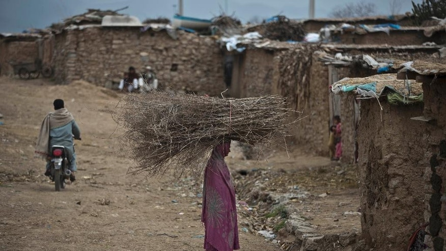 A Pakistani woman, who was displaced with her family from Pakistan's tribal areas due to fighting between the Taliban and the army, balances wood on her head, she collected to be used for heating and cooking, in a poor neighborhood on the outskirts of Islamabad, Pakistan, Friday, March 21, 2014. (AP Photo/Muhammed Muheisen)