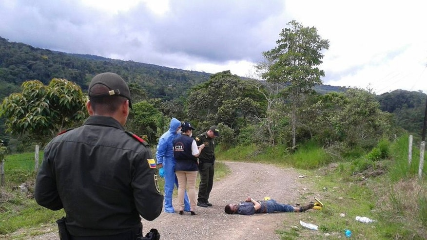 In this photo taken Wednesday, April 23, 2014, police officers and forensics look at the body of British citizen Henry Miller, 19, on a road outside Mocoa, in Colombia's southwestern state of Putumayo. Miller died  after he drank a hallucinogen during a tribal ritual, his body left by the side of the road by two frightened young local men, said Saturday local police commander Ricardo Suarez. (AP Photo/Jose Horacio Villarreal)
