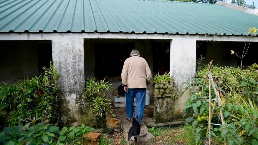 "Uruguay's President Jose Mujica walks into his home, followed by his dog Manuela, at the end of an interview, on the outskirts of Montevideo, Uruguay, Friday, May 2, 2014. Mujica said Friday that his country's legal marijuana market will be much better than Colorado's, where he says the rules are based on ""fiction"" and ""hypocrisy"" because the state loses track of the drug once it's sold and many people fake illnesses to get prescription weed. Mujica says this won't be allowed in Uruguay, where the licensed and regulated market will be much less permissive with drug users. (AP Photo/Matilde Campodonico)"