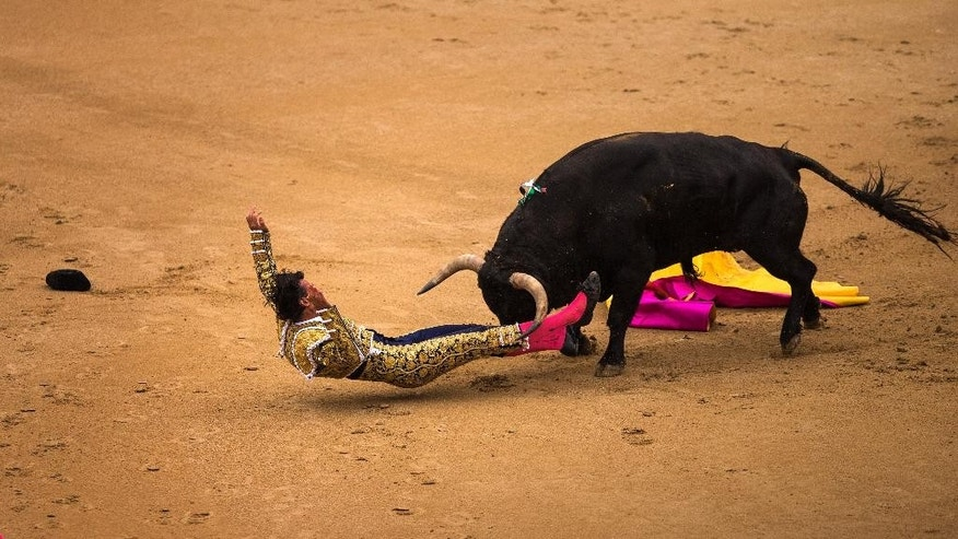 Spanish bullfighter David Mora is tossed by an El Ventorrillo ranch fighting bull during a bullfight at Las Ventas bullring in Madrid, Spain, Tuesday, May 20, 2014. Bullfighting is a traditional spectacle in Spain and the season runs from March to October. (AP Photo/Andres Kudacki)