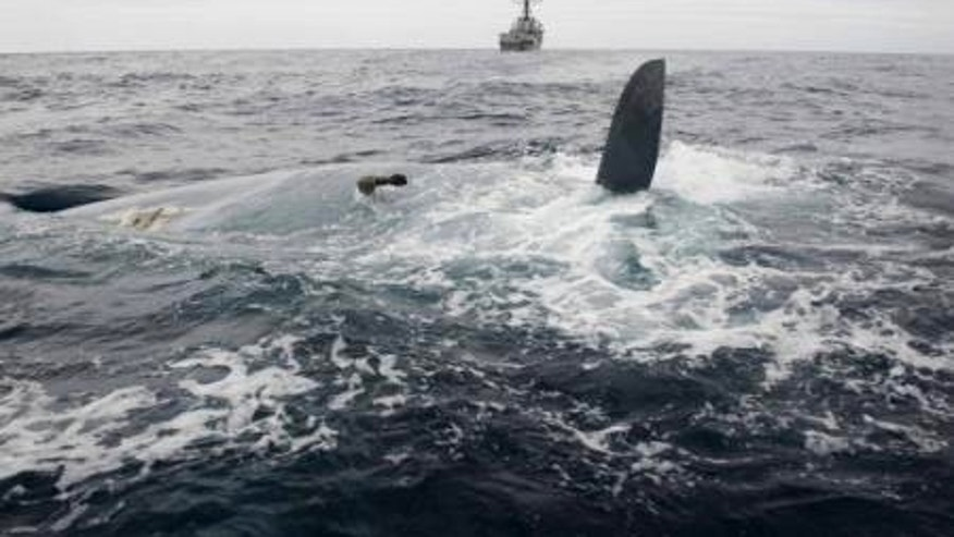 May 23, 2014: In this photo provided by the United States Navy, the overturned hull of the Cheeki Rafiki is shown as discovered by a U.S. Navy warship approximately 1,000 miles east of Cape Cod, Mass.