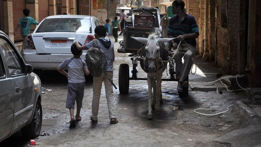 "Boys walk by a donkey cart used by a scrap collector making his rounds in Cairo's neighborhood of Dar el-Salam, Egypt, Thursday, May 29, 2014. ""El-Sissi will leave no one wanting!"" the 50-year-old shopkeeper in a Cairo slum barked when a younger man criticized the victor of Egypt's presidential election, former army chief Abdel-Fattah el-Sissi. The heated argument shows the limits of the retired field marshal's landslide amid a generational divide. Many older voters embraced him enthusiastically. But among the young, ambitions for change have been unleashed, and even those who voted for el-Sissi have low expectations he will fulfill them. (AP Photo/Mahmoud Bakkar)"