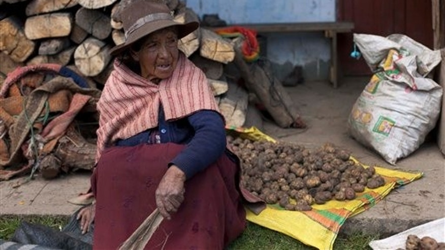In this May 16, 2013 photo, Epifania Zorilla rests from sorting potatoes outside her home in San Antonio de Juprog, Peru. When dozens of Quechua-speaking highlands families sold out to an international mining consortium in 1998-99 to make way for the Antamina copper mine, they say they were led to believe it would lift their long-neglected highlands district from poverty, provide steady jobs, decent health care and schools. Many now say they were deceived. (AP Photo/Martin Mejia)