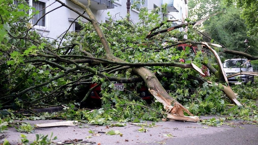 Branches of trees  cover parked cars in a street  in Gelsenkirchen, western Germany, Tuesday June 10, 2014.  Authorities say at least six people were killed in western Germany as heavy rains, hail and high winds battered the region. In the North Rhine-Westphalia capital of Duesseldorf, police said two men and a woman who had sought refuge in a garden house were killed late Monday when a large tree fell on the building, the dpa news agency reported Tuesday. Firefighters were able to rescue six others, and rushed them to hospitals for treatment. Many flights from Duesseldorf airport were delayed and some train routes were still closed Tuesday.    (AP Photo/dpa, Caroline Seidel)