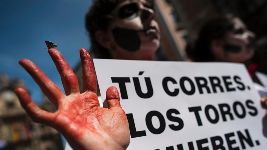 A butterfly rests on the finger of an anti-bullfighting demonstrator a she protest against the bulls runs, while displaying a banner which reads, ''You Run. Bulls Die'', on the Ayuntamiento Square in Pamplona northern Spain, Saturday, July 5, 2014. On July 6, the San Fermin festival will begin with the ''txupinazo'' , the opening ceremony with people participating in bull runs, music and dance, through the old street of the city. (AP Photo/Alvaro Barrientos)