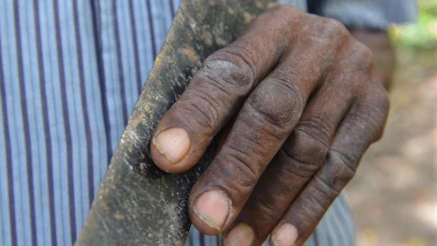 In this July 2, 2014, photo, the weathered hand of Haitian machete fencing expert Alfred Avril is shown holding one of the blades that he uses as an agricultural tool and as a martial arts weapon, outside the town of Jacmel, Haiti. Experts say machete-based martial arts can be found among people of African descent in other countries, including Colombia and Cuba. (AP Photo/David McFadden)