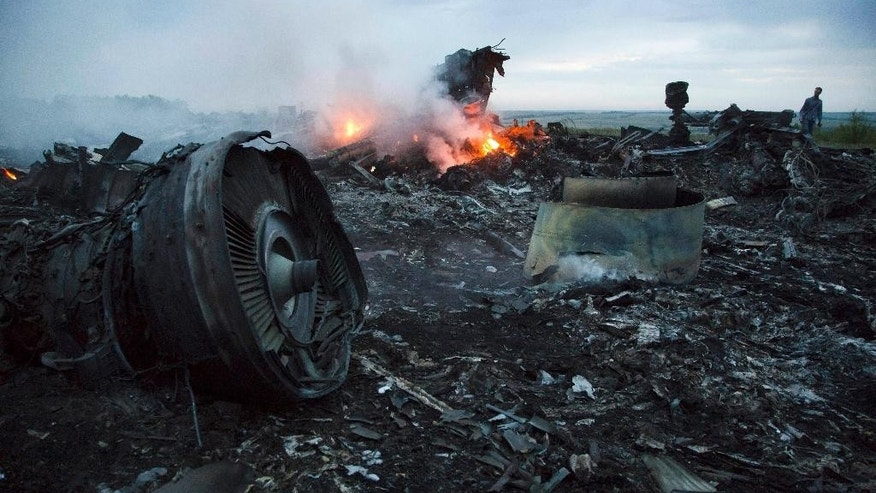A man walks amongst the debris at the crash site of a passenger plane near the village of Grabovo, Ukraine, Thursday, July 17, 2014. Ukraine said a passenger plane carrying 295 people was shot down Thursday as it flew over the country, and both the government and the pro-Russia separatists fighting in the region denied any responsibility for downing the plane. (AP Photo/Dmitry Lovetsky)