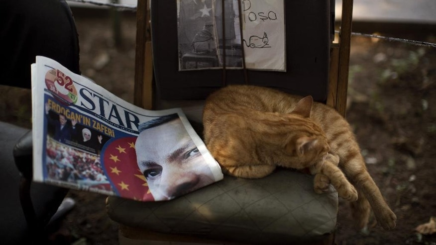 A cat sleeps next to a newspaper showing a photo of the Turkish Prime Minister Recep Tayyip Erdogan in central Istanbul, Turkey, on Monday, Aug. 11, 2014. Erdogan won Turkey's first direct presidential election Sunday, striking a conciliatory tone toward critics who fear he is bent on a power grab as he embarks on another five years at the country's helm. (AP Photo/Emilio Morenatti)