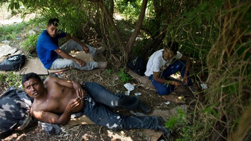 Central American migrants shelter under trees as they wait for a northbound freight train along the overgrown train tracks, several kilometers outside Arriaga, in Chiapas state, Mexico, Tuesday, Aug. 26, 2014. Migrants, who until recently boarded trains openly in Arriaga, have now fled in the face of Mexican immigration raids, hiking into the woods and low jungle for fear of being swept up and deported. (AP Photo/Rebecca Blackwell)