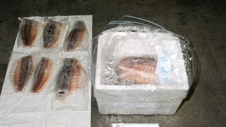 This undated photo taken at an undisclosed Sydney location and provided on Monday, Sept. 15, 2014, by the Australian Federal Police shows a package containing fish and illegal drugs. Two Canadian-Vietnamese dual citizens have been charged with smuggling heroin and methamphetamine worth 75 million Australian dollars ($68 million) hidden in a consignment of frozen fish fillets shipped from Kuala Lumpur to Sydney, officials said. Monday. The men, aged 57 and 55, appeared in a Sydney court on Friday, Sept. 12 on multiple charges related to the shipment of 88 kilograms (194 pounds) of heroin and 21 kilograms (46 pounds) of methamphetamine. They face life in prison if convicted. (AP Photo/Australian Federal Police) EDITORIAL USE ONLY