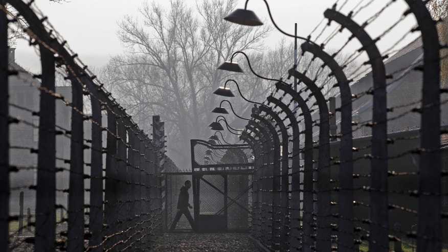 November 18, 2013 - FILE photo of a visitor walking between electric barbed-wired fences at the Auschwitz-Birkenau memorial and former concentration camp .