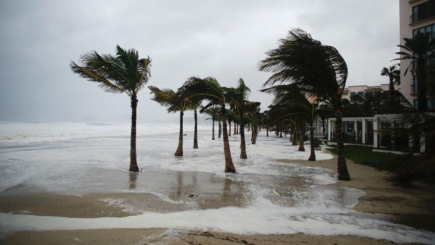 Winds blow palm trees on the beach in Los Cabos, Mexico,  Sunday, Sept. 14, 2014. Hurricane Odile turned into a Category 4 hurricane and it's expected to make a close brush with the southern portion of Mexico's Baja California peninsula Sunday evening. (AP Photo/Victor R. Caivano)