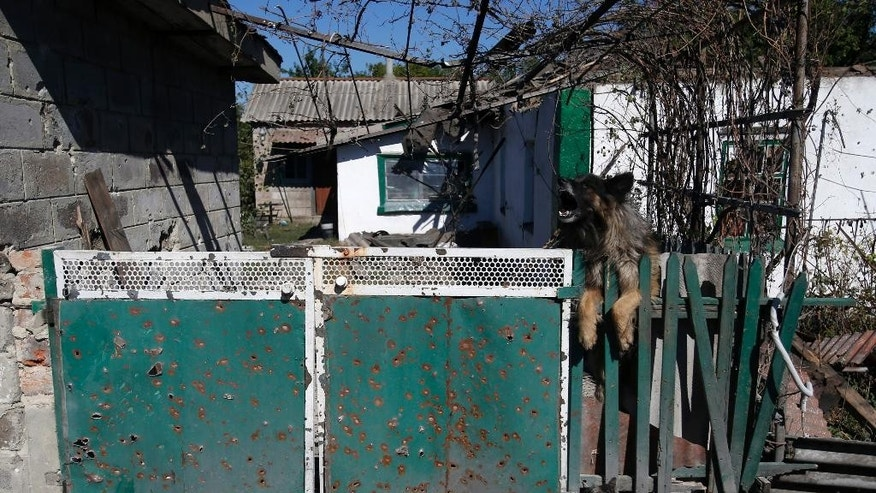 An abandoned dog and cat seen in front of a damaged house, after shelling in the town of Donetsk, eastern Ukraine, Thursday, Sept. 18, 2014. Ukraine and the Russian-backed separatists inked a cease-fire agreement Sept. 5, though the deal has been violated repeatedly. On Wednesday, shelling in rebel-held parts of the east killed at least 12 civilians, as a top leader of pro-Russian rebels rejected Ukrainian legislation meant to end the unrest by granting self-rule to large swaths of the east. (AP Photo/Darko Vojinovic)