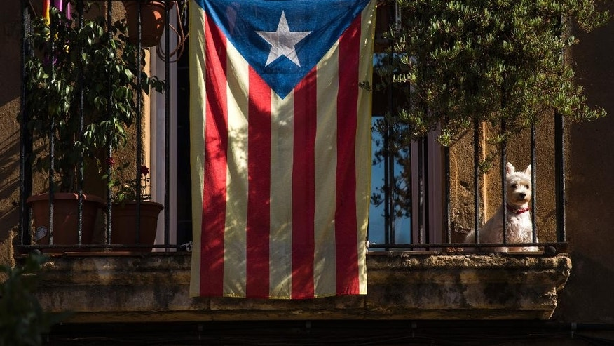 "A dog sits on a balcony decorated with an ""estelada"" flag, that symbolizes Catalonia's independence, in Barcelona, Spain, Monday, Sept. 29, 2014. The Spanish government is holding a special cabinet meeting and is expected to announce it intends to challenge the decision of the powerful northeastern region of Catalonia to call an independence referendum. Unhappy at Spain's refusal to give it more powers, Catalonia has long vowed to hold the referendum Nov. 9. Catalan regional leader Artur Mas formally called the vote Saturday, posing one of the most serious challenges for the Spanish state in recent years. The Spanish government is expected to take the case to the top Constitutional Court. (AP Photo/Emilio Morenatti)"