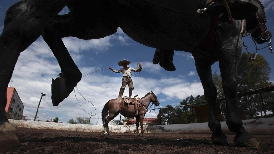 """In this Aug. 31, 2014 photo, charro Leonardo Flores, stands on his horse Canelito while showing off his roping skills; a move called, """"florear sobre el caballo,"""" during a practice session at a corral in southern Mexico City. """"Charreria,"""" the Mexican version of a rodeo, usually consists of nine scoring events that include horses and or cattle. It is Mexico's official national sport as well as being part of the pride and tradition of the Mexican culture. (AP Photo/Marco Ugarte)"""
