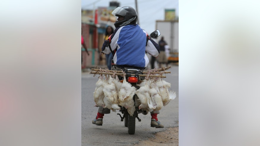 File: In this file photo taken Saturday, Nov. 2, 2013 a man on a scooter transports live chickens to sell in Inchope, northern Mozambique. The country goes to the polls Wednesday, Oct. 15, 2014, with the winners of the election set to control natural resources in the northern part of the country worth billions of dollars.  (AP Photo/Tsvangirayi Mukwazhi)