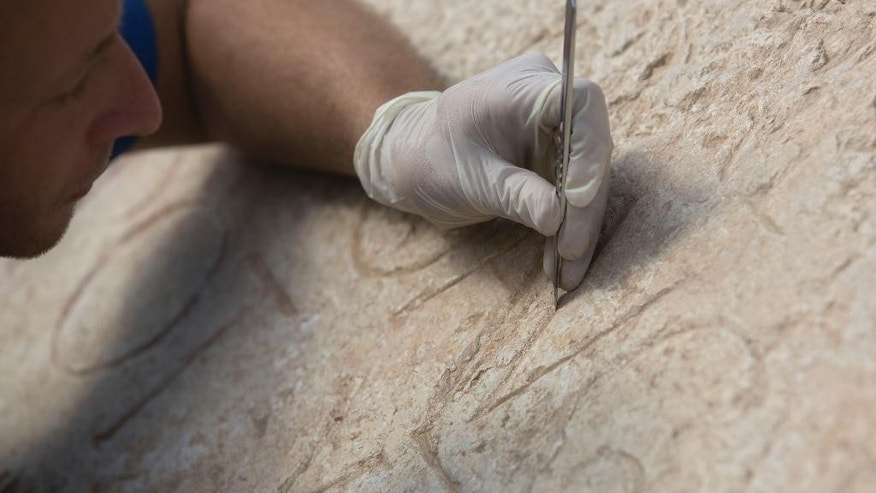 Shmulik Freireich, an Israel Antiquities Authority conservationist works on a commemorative inscription in stone dedicated to the Emperor Hadrian that was found outside Jerusalem's Old City, at the Rockefeller museum in Jerusalem. Tuesday, Oct. 21, 2014. Israeli archaeologists said Tuesday they  discovered a large stone with Latin engravings that lends credence to the theory that the reason Jews revolted against Roman rule nearly 2,000 ago was because of their harsh treatment. Israel's Antiquities Authority said the stone bears the name of the Roman emperor Hadrian and the year of his visit to Jerusalem, a few years before the failed Bar Kochba revolt in the second century A.D.  (AP Photo/Sebastian Scheiner)