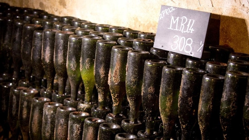 Bottles of 1914 Pol Roger champagne are stacked neck down in the cellars of the Pol Roger Champagne House in Epernay, France, Thursday, Oct. 15, 2014. As Champagne goes, 1914 was a providential year when the sweetest of summers left the richest of grapes waiting for their pickers. As war goes though, the bombs and gunfire could be heard just beyond the hills and most able bodied men were off fighting in the horrors of World War I. (AP Photo/Virginia Mayo)