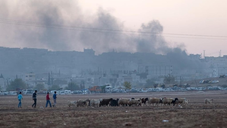 People herd a flock of sheep backdropped by the Syrian city of Kobani engulfed in smoke, following airstrikes by the US led coalition on the outskirts of Suruc, near the Turkey-Syria border, Saturday, Oct. 25, 2014. Kobani, also known as Ayn Arab, and its surrounding areas, has been under assault by extremists of the Islamic State group since mid-September and is being defended by Kurdish fighters. (AP Photo/Vadim Ghirda)