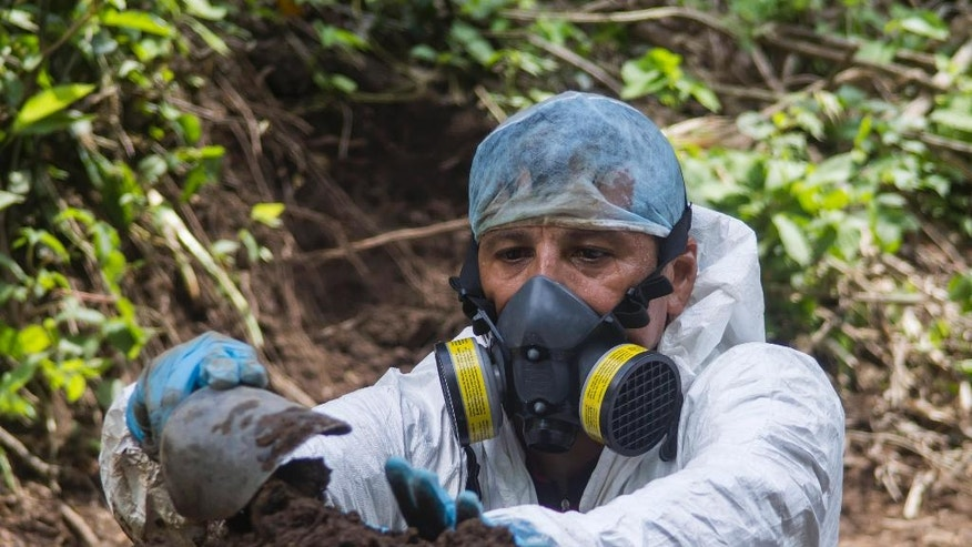 In this Oct. 3, 2014 photo, criminologist Israel Ticas removes soil from a clandestine gravesite in San Salvador, El Salvador. Ticas is a self-taught forensic scientist who says he has opened about 90 common graves with more than 700 bodies over the past 12 years and that is just a fraction of what is out there in his country.  (AP Photo/Salvador Melendez)