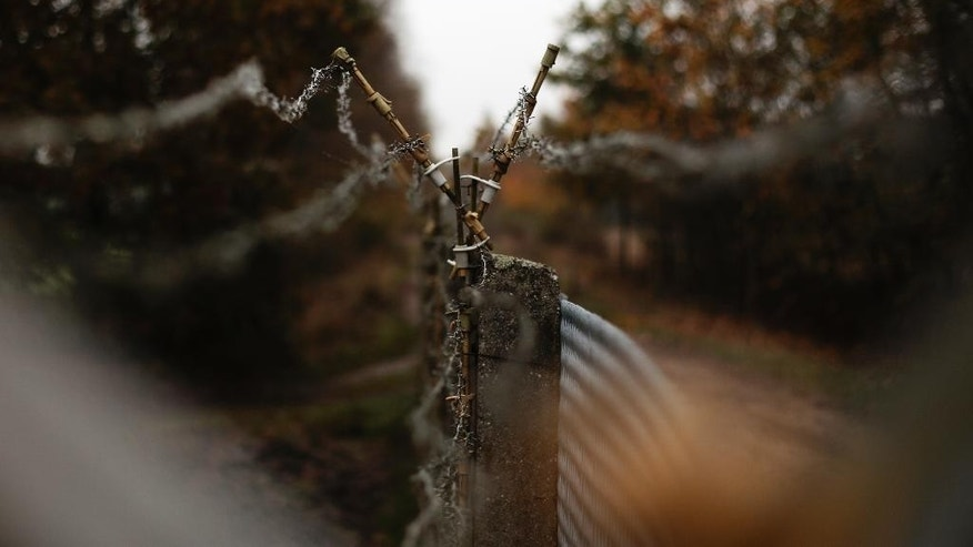 In this picture taken Oct. 29, 2014, remains of the border at the death strip between West and East Germany are seen in Boeckwitz  Germany. It was 1952, and East German authorities were erecting the wooden barrier that broke up the twin towns of Zicherie in the capitalist West and Boeckwitz in the communist East. The two had operated as one for centuries, sharing markets, schools and social clubs, and had long been the site of the Lenz family farm. Nearly a decade before the Berlin Wall went up, East Germany had already started sealing off its main frontier with West Germany, spanning nearly 1,400 kilometers (870 miles), dividing communities and even families.  (AP Photo/Markus Schreiber)