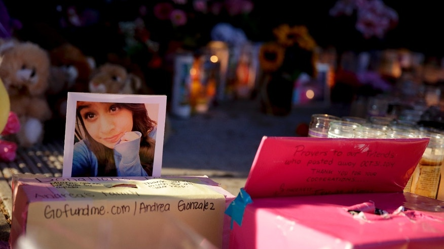 A photograph of Andrea Gonzales is taped to a donation box at a makeshift memorial near where Gonzales and two other girls were killed in a hit and run on Halloween, Monday, Nov. 3, 2014, in Santa Ana, Calif. (AP Photo/Chris Carlson)