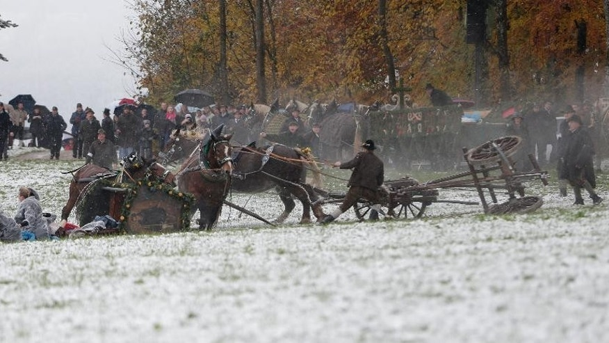 A man tries to hold bolted horses after a carriage tilted over during the traditional Leonhardi pilgrimage in Bad Toelz, southern Germany, Thursday, Nov. 6, 2014. Several people were injured in the annual pilgrimage honoring St. Leonhard, patron saint of the highland farmers for horses and livestock. (AP Photo/Matthias Schrader)