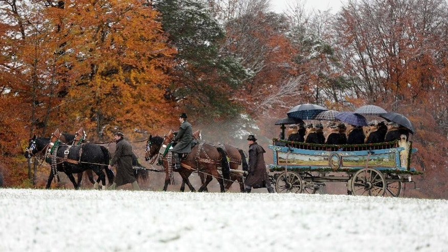 Horsemen steer their carriage during the traditional Leonhardi pilgrimage in Bad Toelz, southern Germany, Thursday, Nov. 6, 2014. Several people were injured when horses bolted during the annual pilgrimage honors St. Leonhard, patron saint of the highland farmers for horses and livestock. (AP Photo/Matthias Schrader)