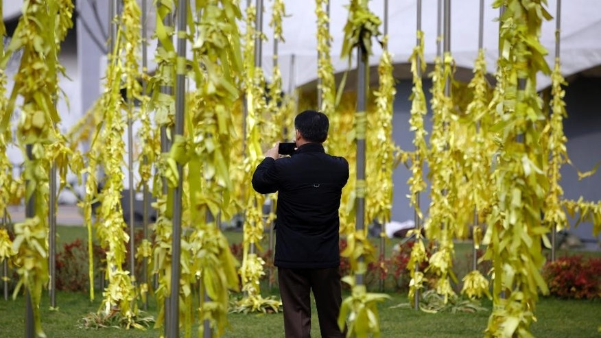 A man takes pictures with his smartphone of yellow ribbons tied with messages for missing passengers and victims aboard the sunken ferry Sewol in the water off the southern coast, in Seoul, South Korea, Tuesday, Nov. 11, 2014. A South Korean court on Tuesday handed a 36-year prison sentence to the captain of the ferry, Lee Joon-seok, saying he was professionally negligent and abandoned his passengers during the disaster in April that killed more than 300 people. (AP Photo/Lee Jin-man)
