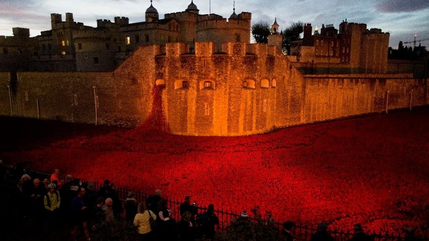 "The near completed ceramic poppy art installation by artist Paul Cummins entitled ""Blood Swept Lands and Seas of Red"" is lit up before sunrise in the dry moat of the Tower of London in London, Tuesday, Nov. 11, 2014.  The finished installation will be made up of 888,246 ceramic poppies, with the final poppy being placed on Armistice Day today. Each poppy represents a British and Commonwealth military fatality from World War I.  (AP Photo/Matt Dunham)"