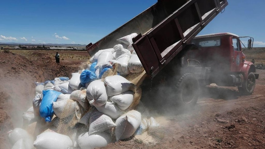 In this Nov. 7, 2014 photo, a truck dumps Peruvian quinoa before burning it in Guaqui, Bolivia. Bolivia has started taking a tougher line on cheaper factory-farmed quinoa from Peru, whose higher output stems from the insecticides and chemical fertilizers its agribusinesses are using. Peru's grain is increasingly being smuggled into landlocked Bolivia to be mixed with, and sometimes sold as, organic quinoa, Bolivian growers and government officials say. (AP Photo/Juan Karita)