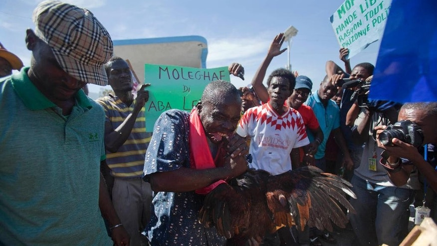 An anti-government demonstrator kills a rooster with his teeth during a voodoo ceremony at the start of a protest demanding the resignation of Haiti's President Michel Martelly in Port-au-Prince, Haiti, Friday, Dec. 5, 2014. (AP Photo/Dieu Nalio Chery)