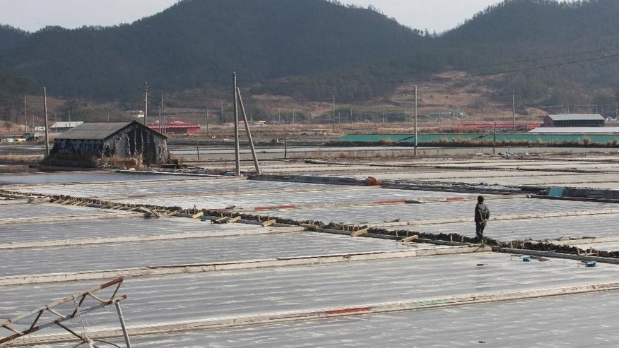 In this Feb. 19, 2014, a salt farm owner walks around his salt farm on Sinui Island, South Korea. Slavery thrives on this chain of rural islands off South Korea's rugged southwest coast, nurtured by a long history of exploitation and the demands of trying to squeeze a living from the sea. Five times during the last decade, revelations of slavery involving the disabled have emerged, each time generating national shame and outrage.(AP Photo/Ahn Young-joon)
