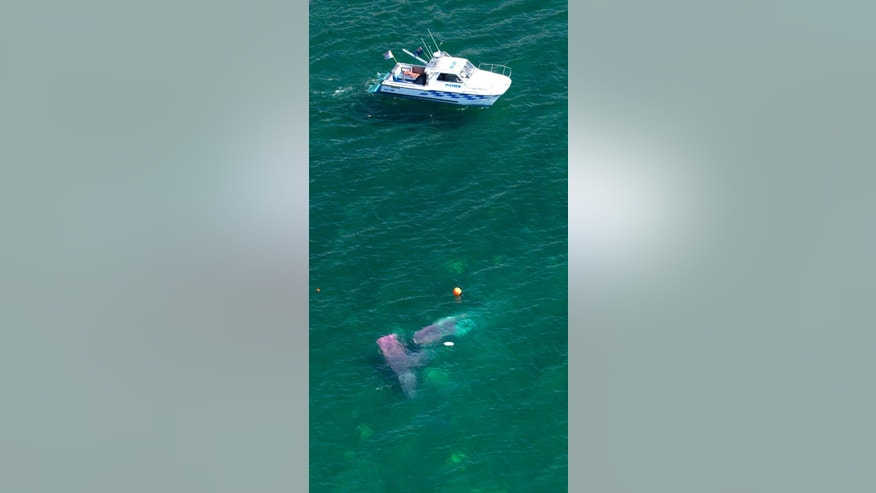 A police boat circles a crashed plane in Lake Taupo in New Zealand Wednesday, Jan. 7, 2015. All 13 people aboard a New Zealand skydiving plane that suffered an apparent engine failure managed to leap out in parachutes moments before the plane plunged into a lake, according to authorities.(AP Photo/New Zealand Herald, Alan Gibson) AUSTRALIA OUT, NEW ZEALAND OUT
