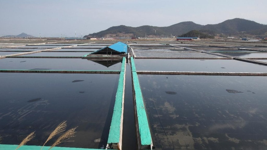 This Feb. 19, 2014 photo shows salt farms on Sinui Island, South Korea. Life as a salt-farm slave was so bad Kim Jong-seok sometimes fantasized about killing the owner who beat him daily. Freedom, he says, has been worse. In the year since police emancipated the severely mentally disabled man from the farm where he had worked for eight years, Kim has lived in a grim homeless shelter, preyed upon and robbed by other residents. He has no friends, no job training prospects or counseling, and feels confined and deeply bored. (AP Photo/Ahn Young-joon)