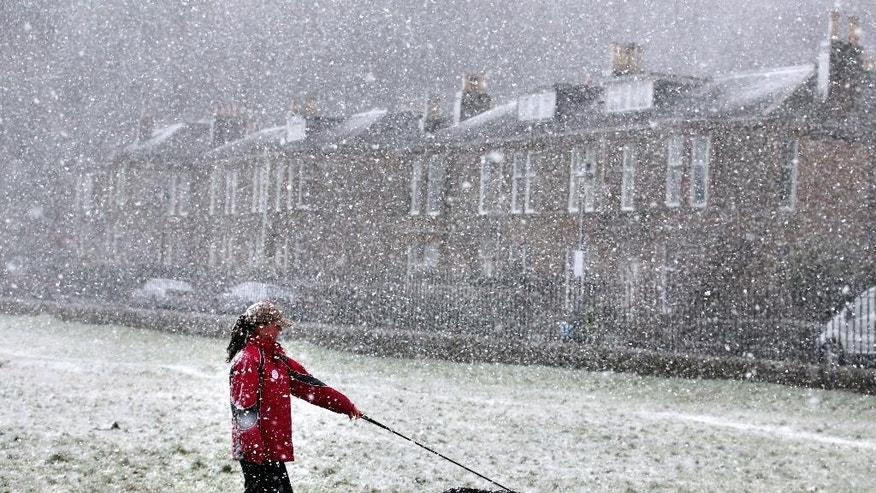 A dog walker walks through the Kings Knot area below Stirling Castle, Scotland, Wednesday, Jan. 28, 2015, during a snow blizzard, as a cold weather front is set to sweep in with temperatures expected to drop as much as 10C (18 degrees Fahrenheit) to below zero into Thursday. (AP Photo/PA, Andrew Milligan) UNITED KINGDOM OUT  NO SALES  NO ARCHIVE