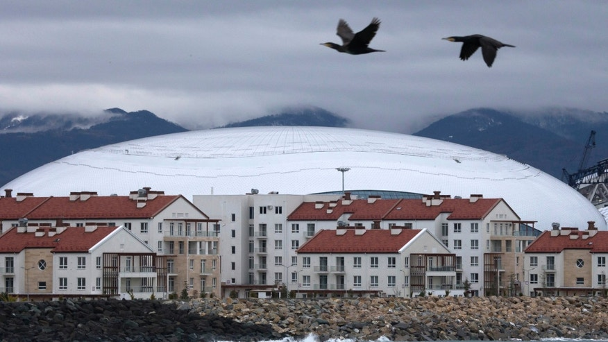 Jan. 13, 2015: two cormorants fly over the coast in the Black Sea resort of Sochi, Russia.