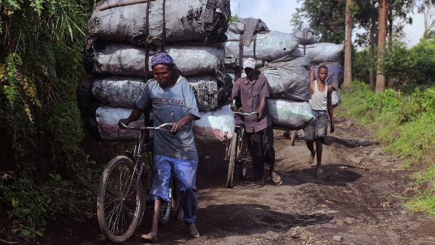 In this photo taken on Tuesday, Jan. 27, 2015, people carry bags of charcoal on their bikes as they go down a hill in Mweso, Democratic Republic of Congo. Many hope the elimination of the FDLR will create stability not only in eastern Congo but in Rwanda, where the government has long been accused of backing rebels who fight the FDLR. The FDLR, though, also have become an integral part of the region's economy, running the illegal charcoal trade that provides thousands of households with fuel to cook and heat their homes despite causing deforestation. (AP Photo/Melanie Gouby)