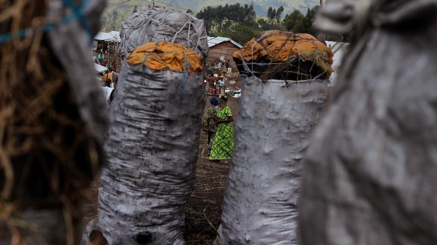 In this photo taken on Tuesday, Jan. 27, 2015,  bags of coal await buyers, foreground, as people in the rear trade in the village of  Karenga, Democratic Republic of Congo. The wobbly white tarp tents once constructed for people fleeing a violent Rwandan Hutu rebel group have gradually been replaced by more solid huts of branches, banana leaves and mud. After all, it's been nine years now since the residents became refugees in their own country.   (AP Photo/Melanie Gouby)