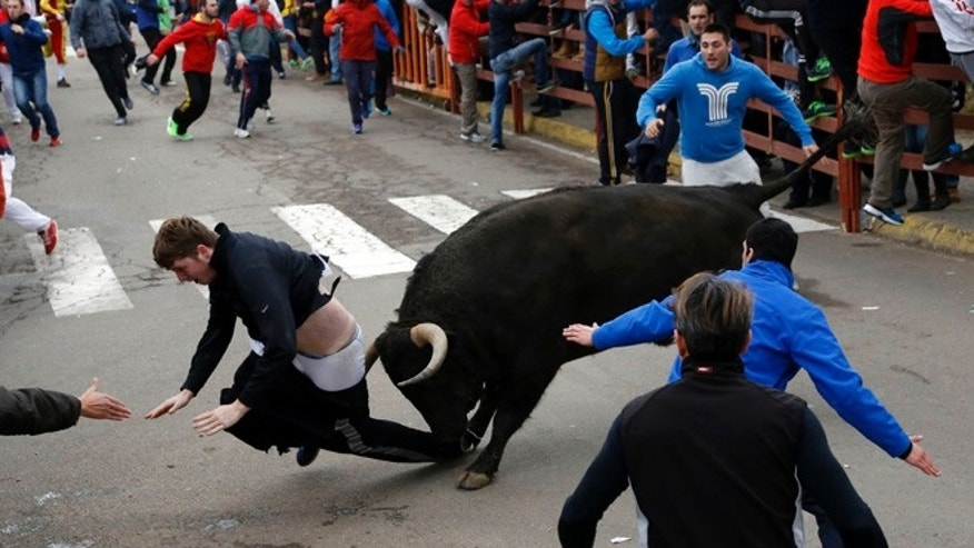 "Feb. 14, 2015: Benjamin Miller, 20, from Georgia, in the US,  is gored by a bull during the ""Carnaval del Toro"" in Ciudad Rodrigo, Spain."