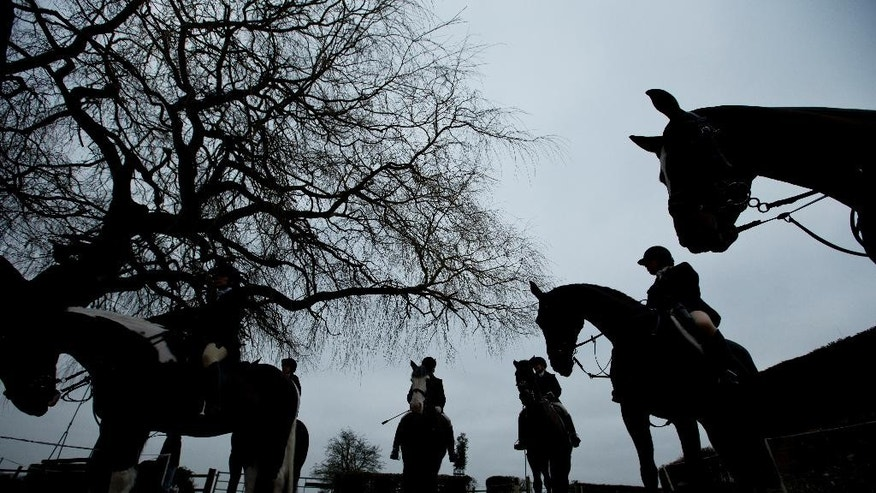 "In this photo taken Tuesday, Feb. 10, 2015, members of the of Kimblewick Hunt gather and have a cup of mulled wine prior to taking part in the hunt at Ibstone, England. A decade ago, Britain banned fox hunting with hounds, a centuries-old blood sport with deep roots in the countryside and strong opponents in the towns. Animal-welfare groups cheered the end of what they considered a cruel pastime reserved for the rich _ a sport Oscar Wilde dubbed ""the unspeakable in full pursuit of the uneatable.""(AP Photo/Alastair Grant)"