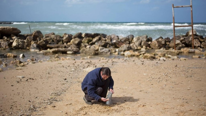 Dror Planer of the Israel Antiquities Authority collects atimid period gold coins that were found in the seabed in the Mediterranean Sea near the port of Caesarea National Park in Caesarea, Israel, Wednesday, Feb. 18, 2015. A group of amateur Israeli divers have stumbled upon the largest collection of medieval gold coins ever found in the country, dating back to the 11th century and likely from a shipwreck in the Mediterranean Sea. (AP Photo/Ariel Schalit)