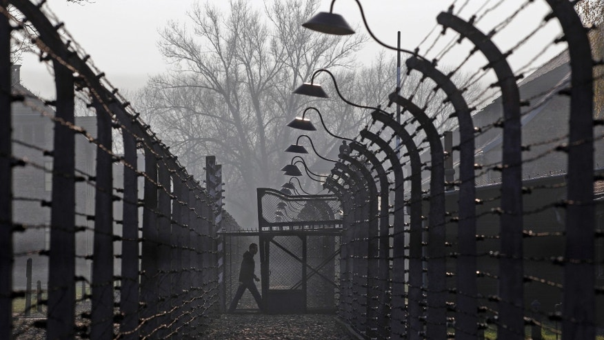 FILE photo: A visitor walks between electric barbed-wired fences at the Auschwitz-Birkenau memorial and former concentration camp.  REUTERS