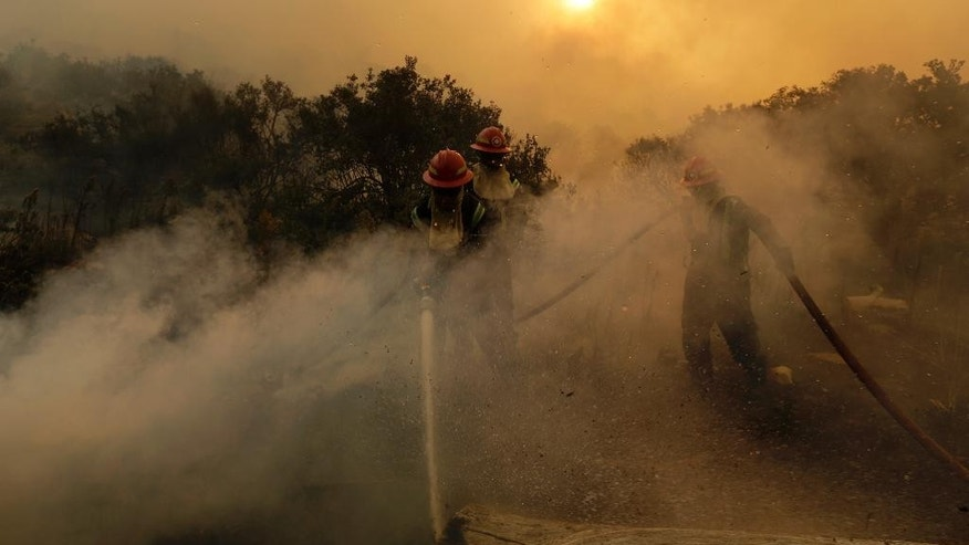 Firemen hose down smoldering logs in the Tokai Forest near Cape Town, South Africa, Tuesday, March 3, 3015. A wildfire continues to burn across the city's southern peninsula Tuesday after breaking out Sunday with firefighting re-enforcement being flown in to assist with battling the blaze. (AP Photo/Mark Wessels)