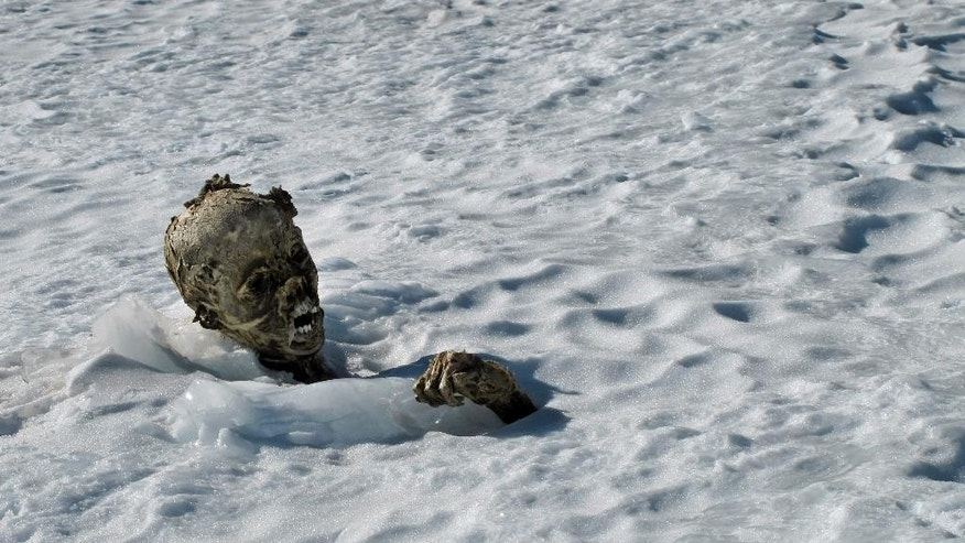 In this Feb. 28, 2015 photo, a mummified frozen body sticks out from the snow in a glacier on the Pico de Orizaba volcano, Mexico's tallest peak. Officials said Friday March 6, 2015, that climbers found a second mummified body and that they may be the remains of climbers missing since a 1959 avalanche on the peak. They believe that a third body may be found because three were reported missing in the avalanche. (AP Photo/Israel Mijangos Q.)
