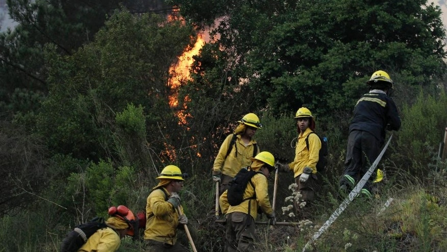 Firefighters get ready to attack a forest fire in Valparaiso,Chile, Saturday, March 14, 2015. A serious forest fire spread quickly on Chile's coast Friday and threatened to reach the nearby port cities of Valparaiso and Vina del Mar. (AP Photo/Luis Hidalgo)