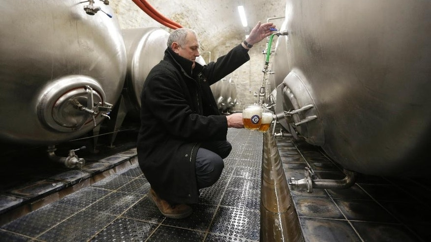 In this photo taken Wednesday, March 18, 2015, Director of Cvikov Brewery Viktor Tkadlec pours glasses of beer in its cellar in Cvikov, Czech Republic. After shutting down in droves during the decades of Communist rule, the Czech Republic's small brewers are staging a comeback. Dilapidated beer making facilities dotted across this patch of Central Europe, which is better known for a clutch of global brands like Pilsner Urquell, are being reopened to revive local brewing traditions that date back to the 10th century. (AP Photo/Petr David Josek)