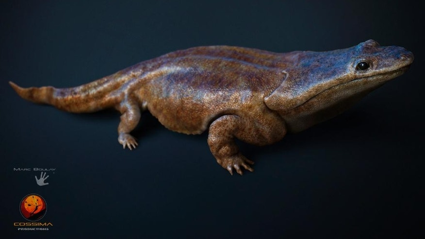 "In this image  made available by the University of Edinburgh on Tuesday March 24, 2015 shows  an artist's rendition of a previously unknown species of crocodile-like ""super salamander"" that roamed the Earth more than 200 million years ago. University of Edinburgh researchers say the species discovered in Portugal was among the Earth's top predators. The team said Tuesday it was part of a wider group of primitive amphibians that were widespread at the time. (AP Photo/University of Edinburgh, Marc Boulay Cossima Productions)"
